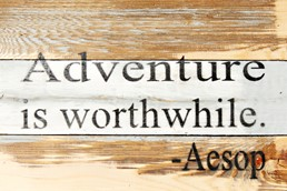 Adventure Worthwhile 12X8 Reclaimed Wood Wall Art