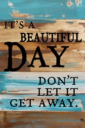 It's A Beautiful Day 12x18 Reclaimed Wood Wall Art