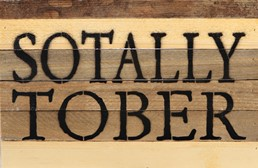 Sotally Tober 12x8 Reclaimed Wood Wall Art