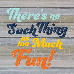 No Such Thing As Too Much Fun 12x12 Indoor/Outdoor Recycled Polystyrene Wall Art