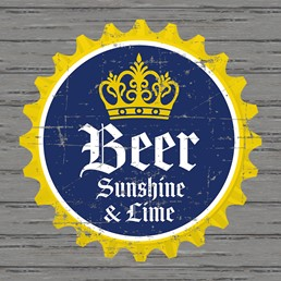 Beer, Sunshine & Lime 12x12 Indoor/Outdoor Recycled Polystyrene Wall Art